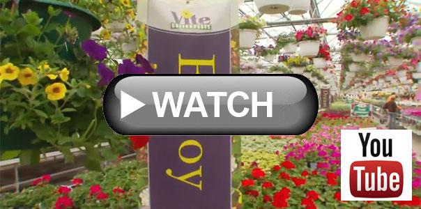 Where Your Beautiful Gardens Begin Vite Greenhouses